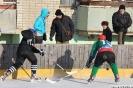 Чемпионат области по хоккею с шайбой
