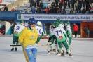 Кубок губернатора ЕАО по хоккею с мячом выиграли хоккеисты арсеньевского «Востока»